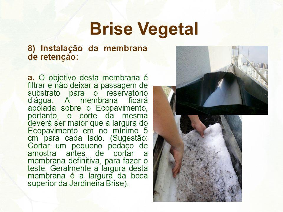 Brise Vegetal 8) Instalação da membrana de retenção: