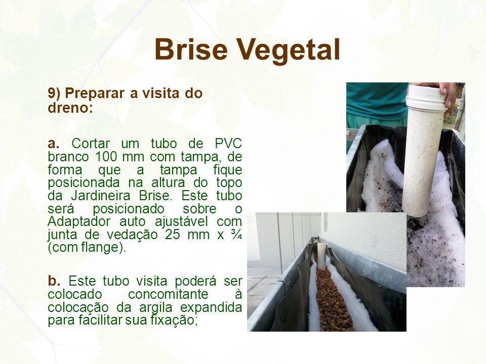 Brise Vegetal 9) Preparar a visita do dreno: