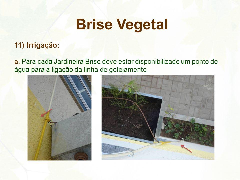 Brise Vegetal 11) Irrigação: