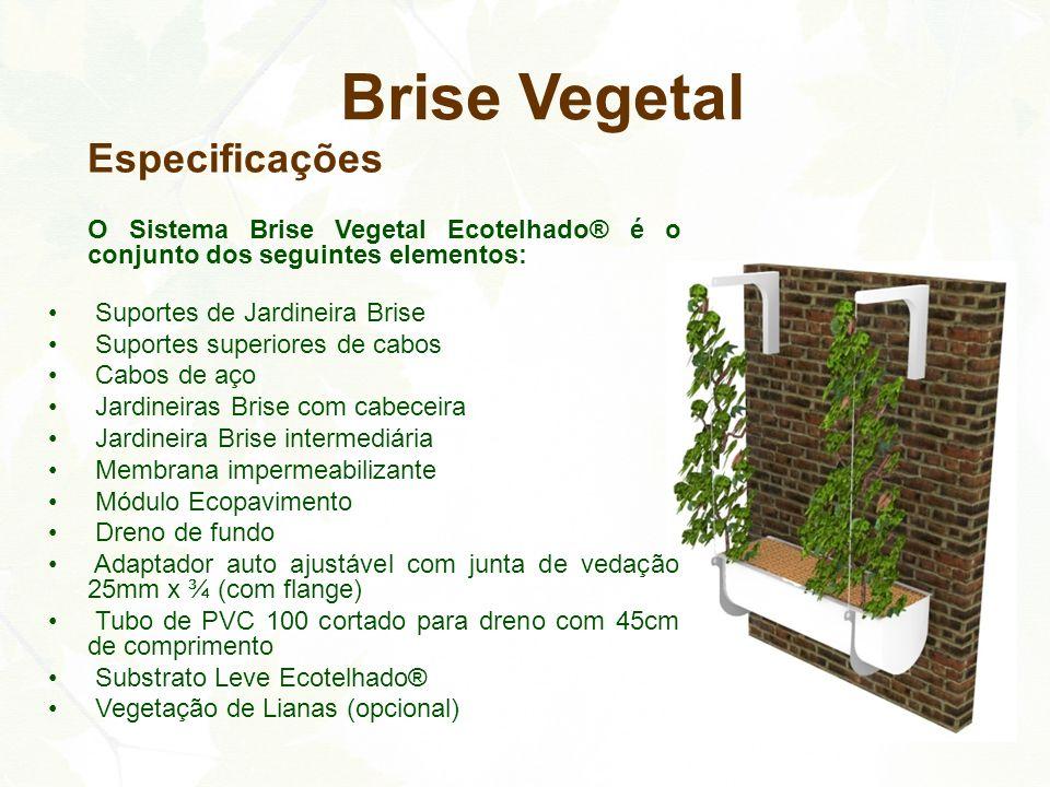 Brise Vegetal Especificações Suportes de Jardineira Brise