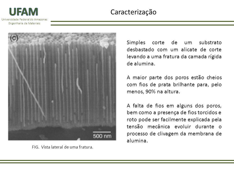UFAM Caracterização. Universidade Federal do Amazonas. Engenharia de Materiais.