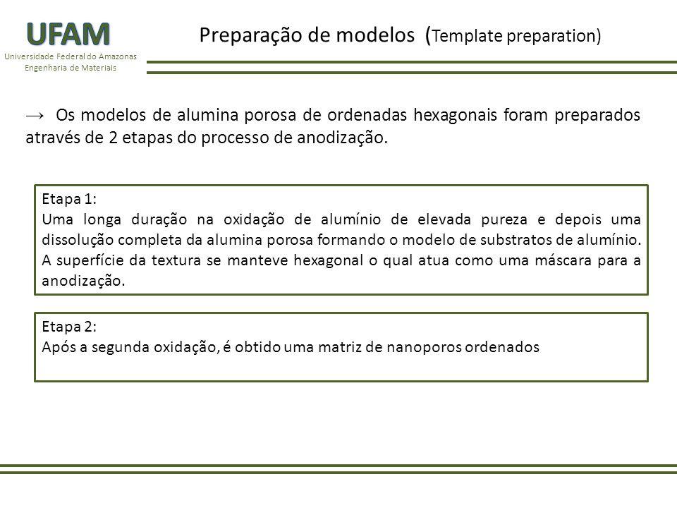 UFAM Preparação de modelos (Template preparation)