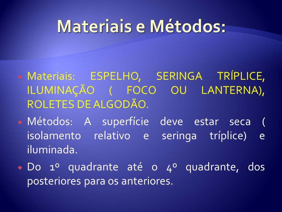 Materiais e Métodos: Materiais: ESPELHO, SERINGA TRÍPLICE, ILUMINAÇÃO ( FOCO OU LANTERNA), ROLETES DE ALGODÃO.