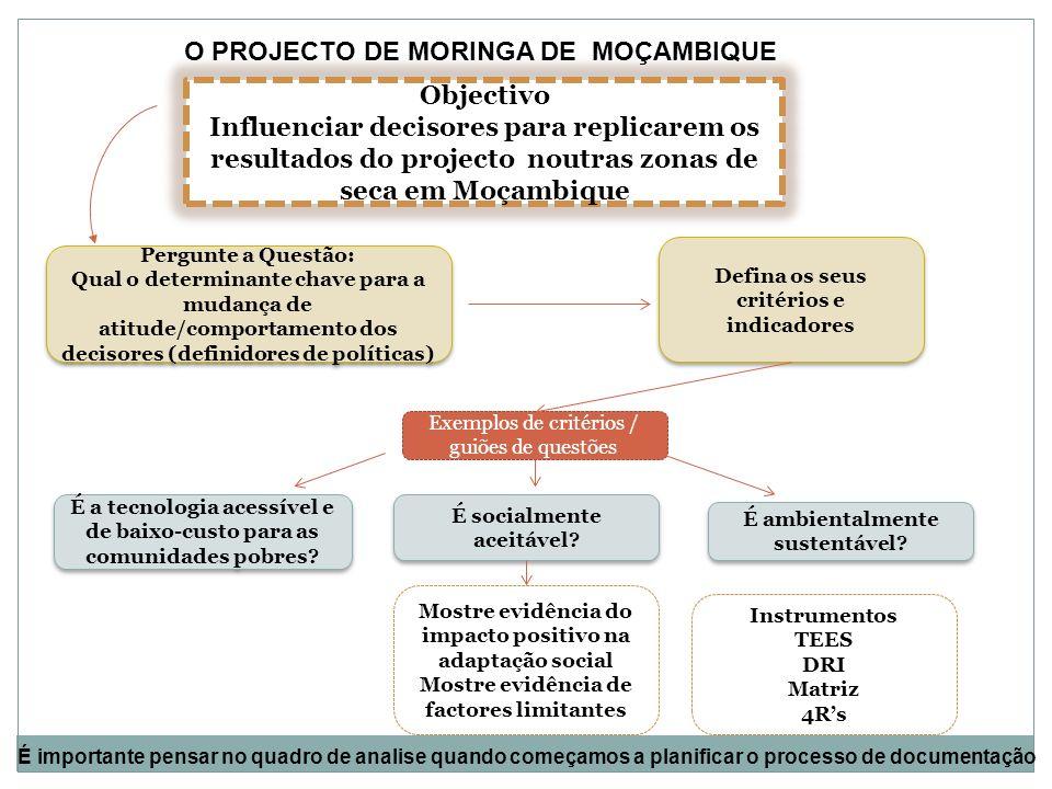 O PROJECTO DE MORINGA DE MOÇAMBIQUE
