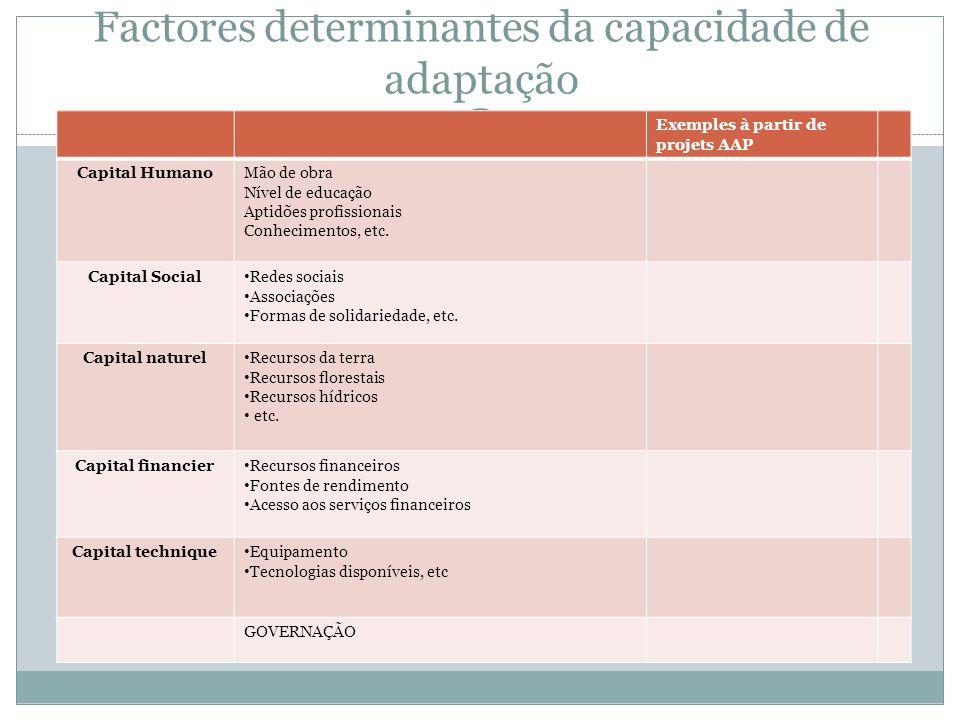 Factores determinantes da capacidade de adaptação