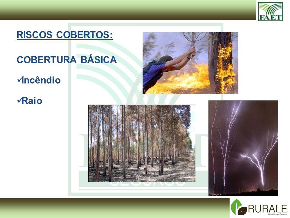 RISCOS COBERTOS: COBERTURA BÁSICA Incêndio Raio
