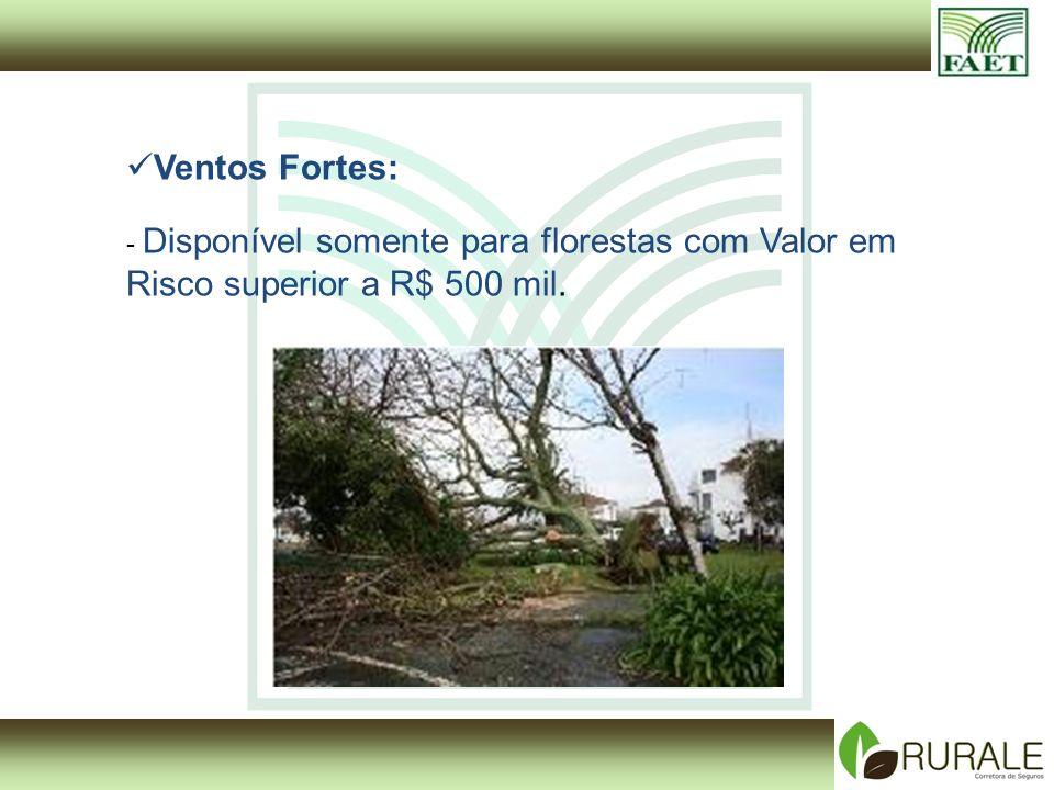 Ventos Fortes: - Disponível somente para florestas com Valor em Risco superior a R$ 500 mil.