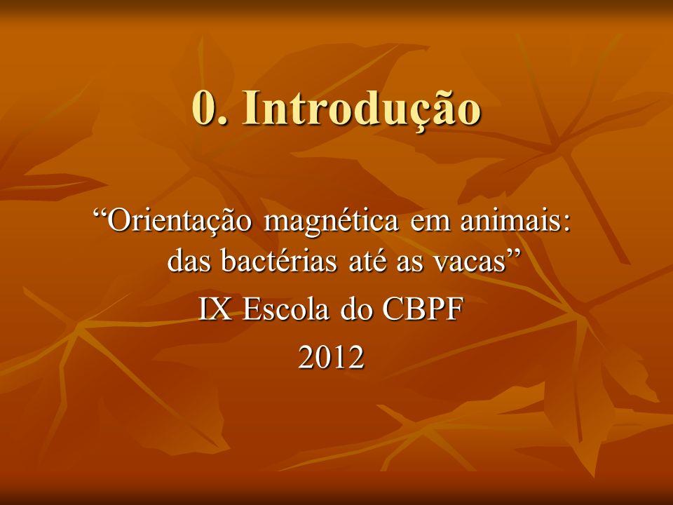 Orientação magnética em animais: das bactérias até as vacas