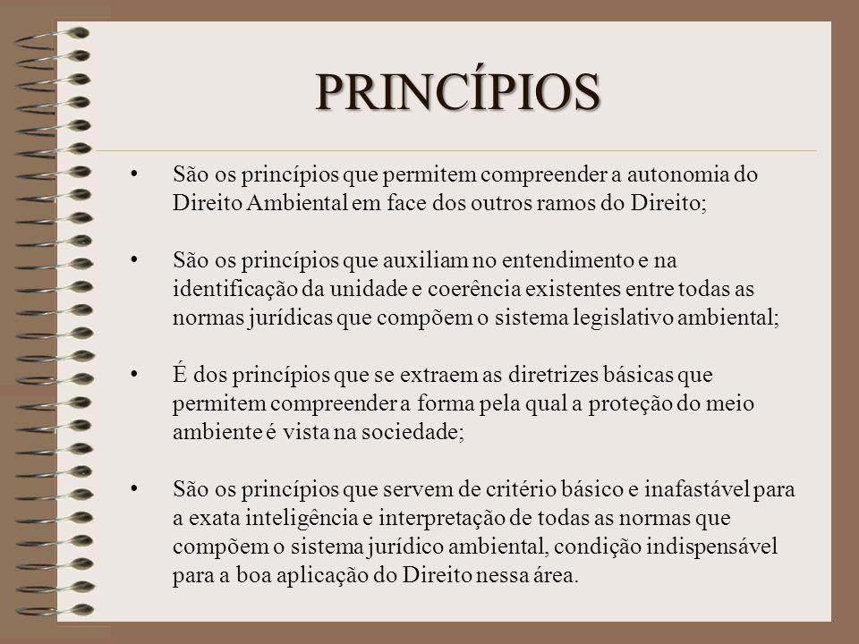 PRINCÍPIOS São os princípios que permitem compreender a autonomia do Direito Ambiental em face dos outros ramos do Direito;