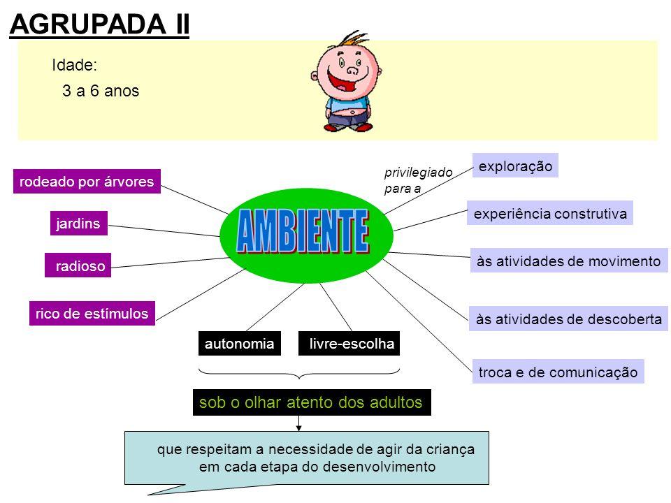 AMBIENTE AGRUPADA II Idade: 3 a 6 anos sob o olhar atento dos adultos