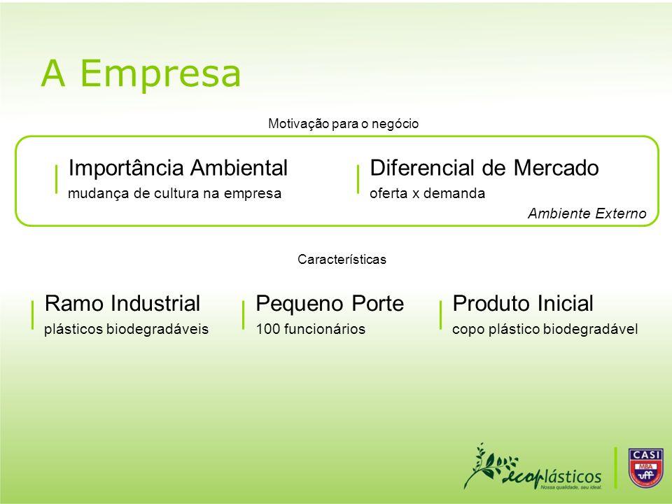A Empresa Importância Ambiental Diferencial de Mercado Ramo Industrial
