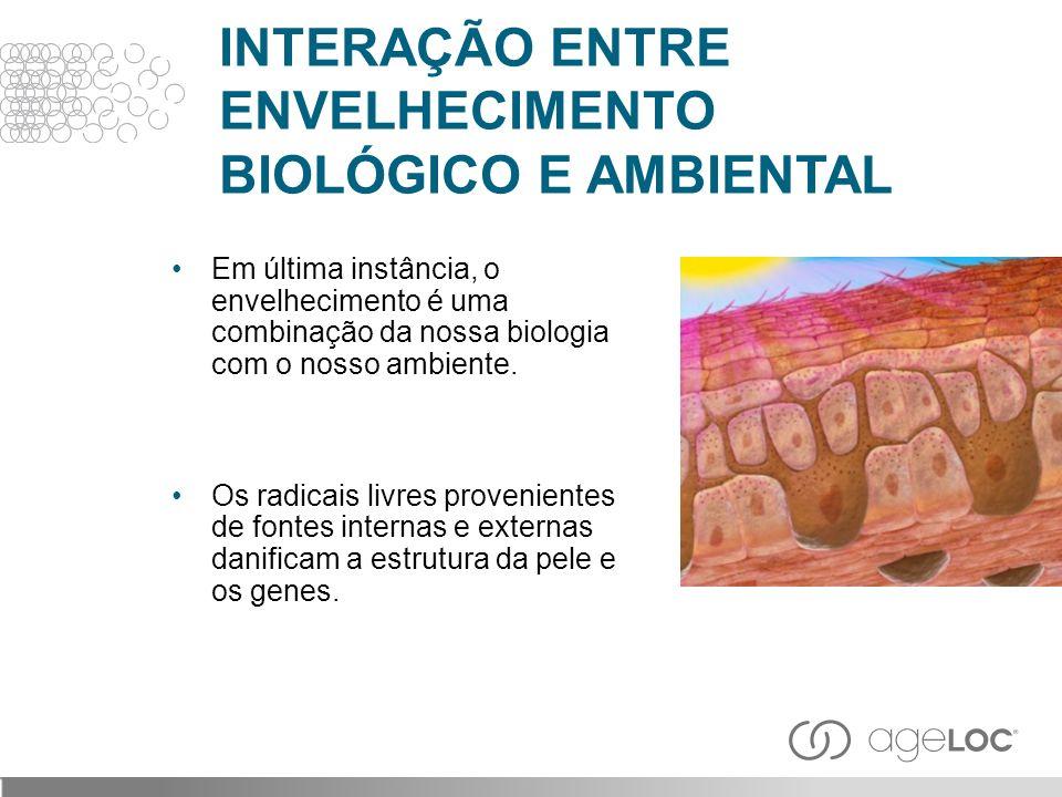 INTERAÇÃO ENTRE ENVELHECIMENTO BIOLÓGICO E AMBIENTAL