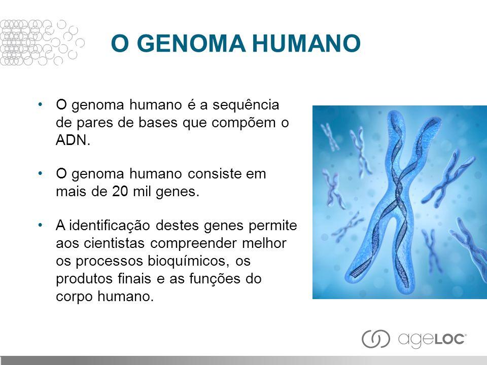 O GENOMA HUMANO O genoma humano é a sequência de pares de bases que compõem o ADN. O genoma humano consiste em mais de 20 mil genes.