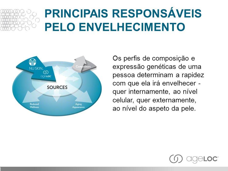 PRINCIPAIS RESPONSÁVEIS PELO ENVELHECIMENTO