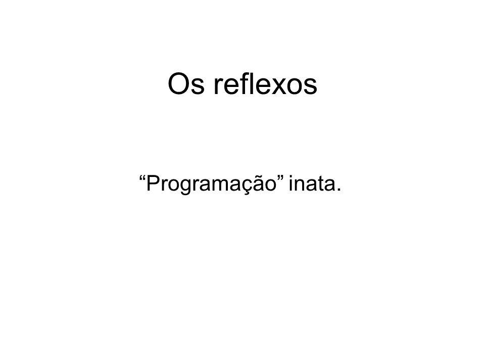 Os reflexos Programação inata.