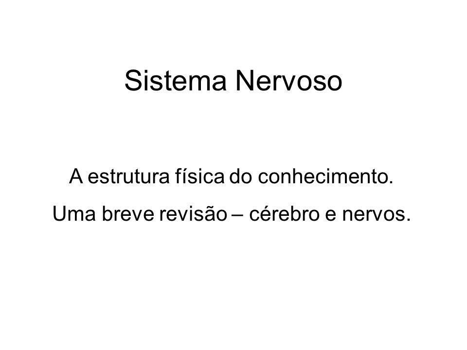 Sistema Nervoso A estrutura física do conhecimento.