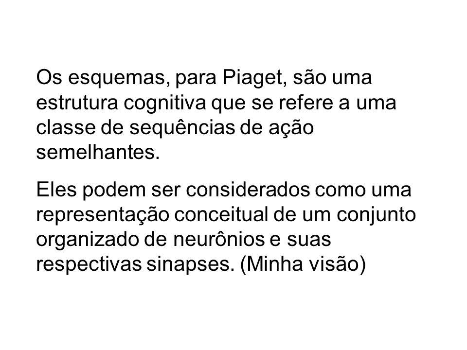 Os esquemas, para Piaget, são uma estrutura cognitiva que se refere a uma classe de sequências de ação semelhantes.