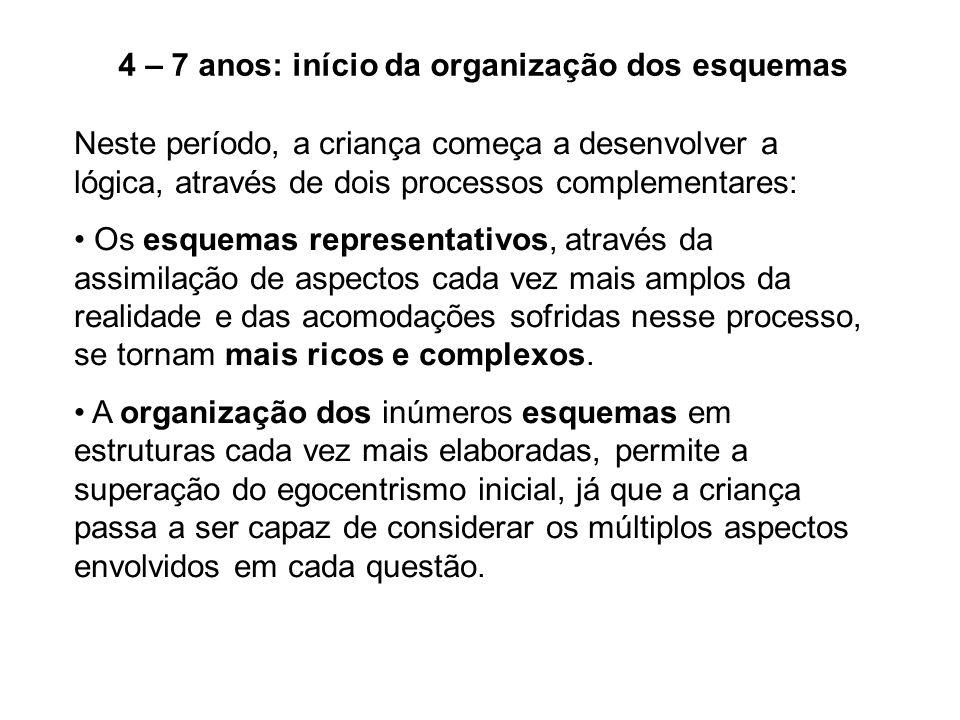 4 – 7 anos: início da organização dos esquemas