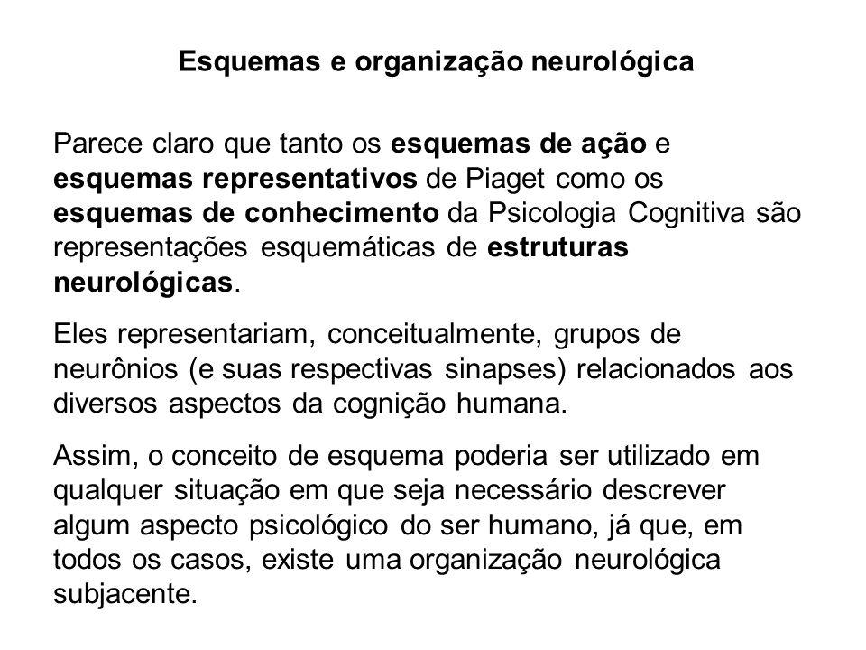 Esquemas e organização neurológica