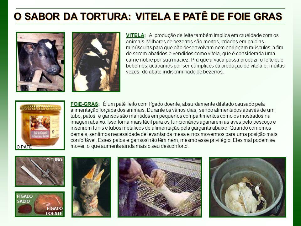 O SABOR DA TORTURA: VITELA E PATÊ DE FOIE GRAS