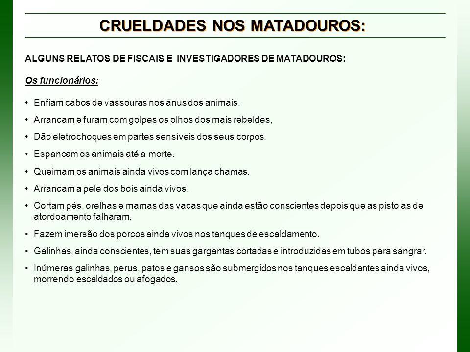 CRUELDADES NOS MATADOUROS:
