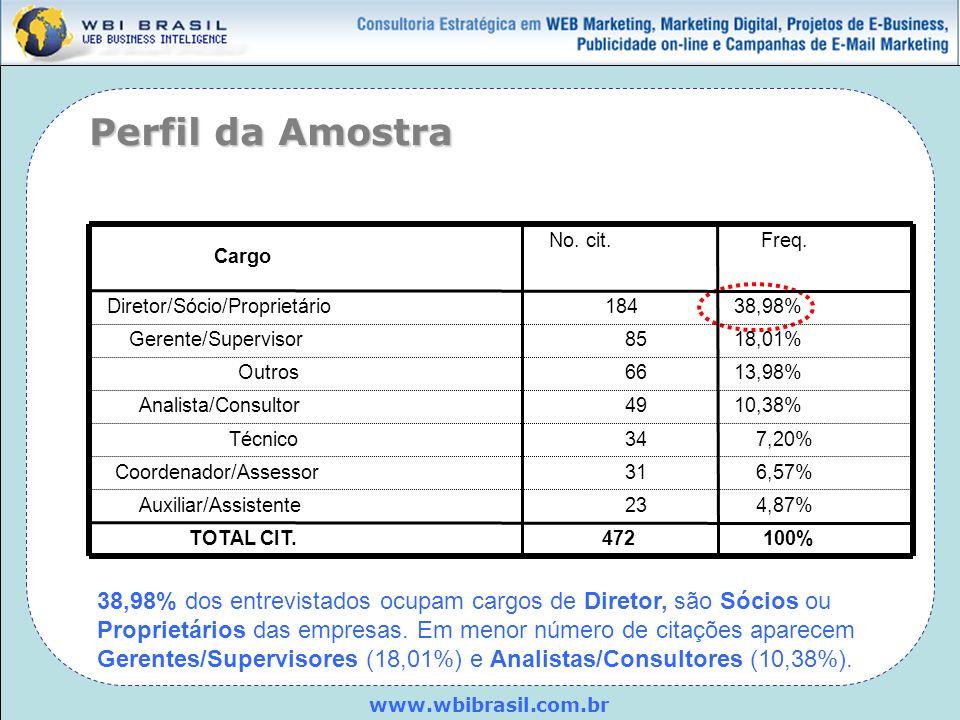 Perfil da Amostra Cargo. Diretor/Sócio/Proprietário. Gerente/Supervisor. Outros. Analista/Consultor.