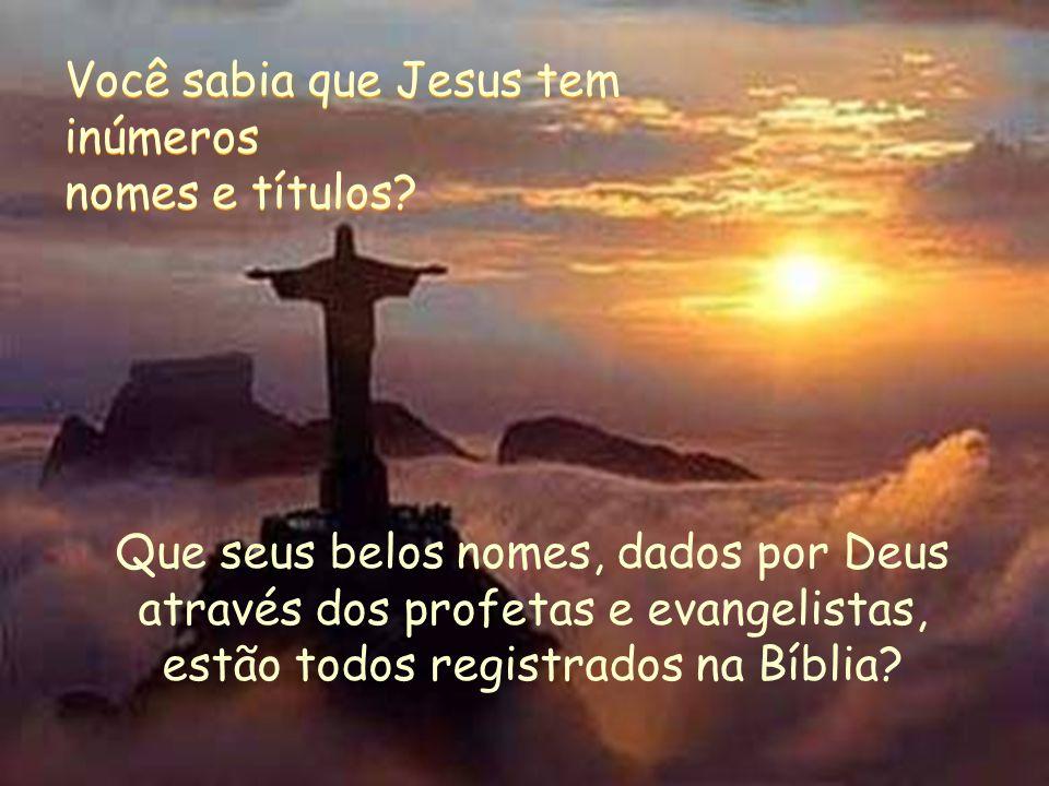 Você sabia que Jesus tem inúmeros
