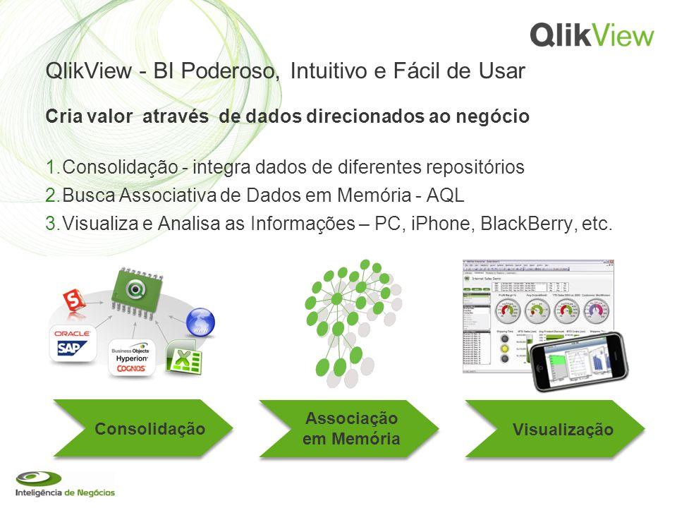 QlikView - BI Poderoso, Intuitivo e Fácil de Usar