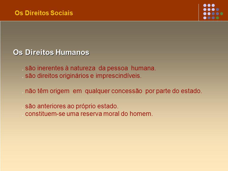 Os Direitos Humanos Os Direitos Sociais