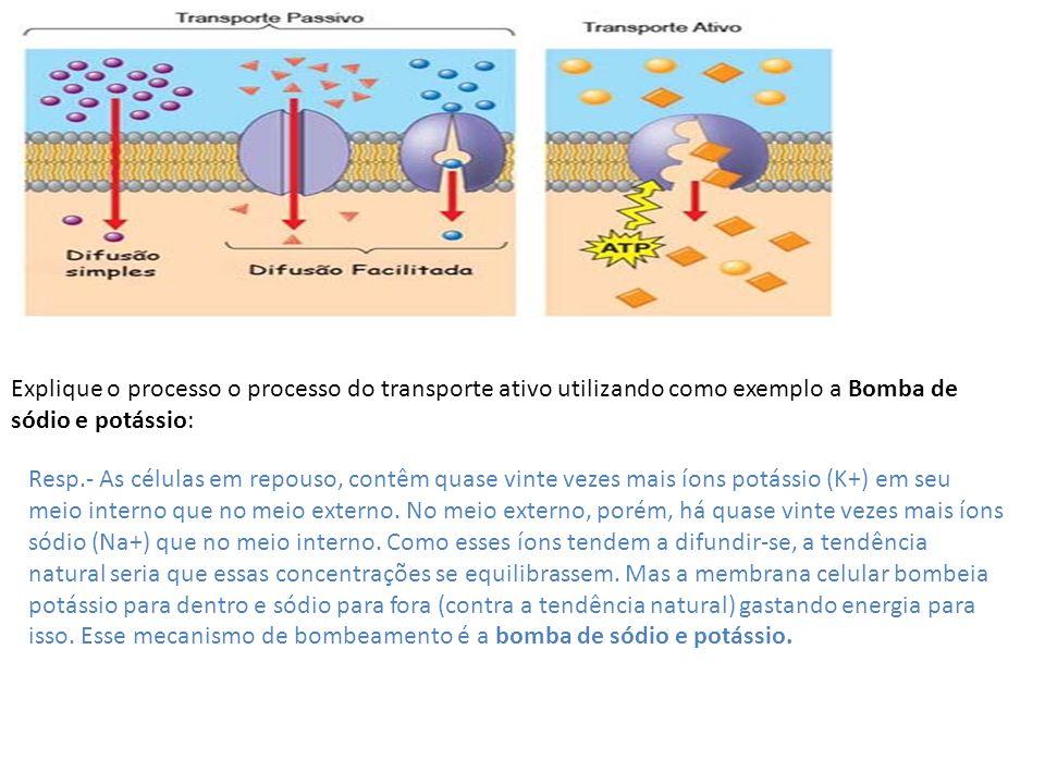 Explique o processo o processo do transporte ativo utilizando como exemplo a Bomba de sódio e potássio: