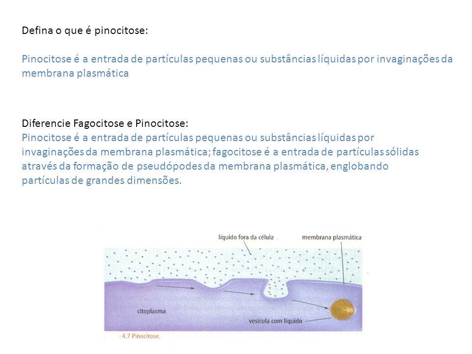 Defina o que é pinocitose: