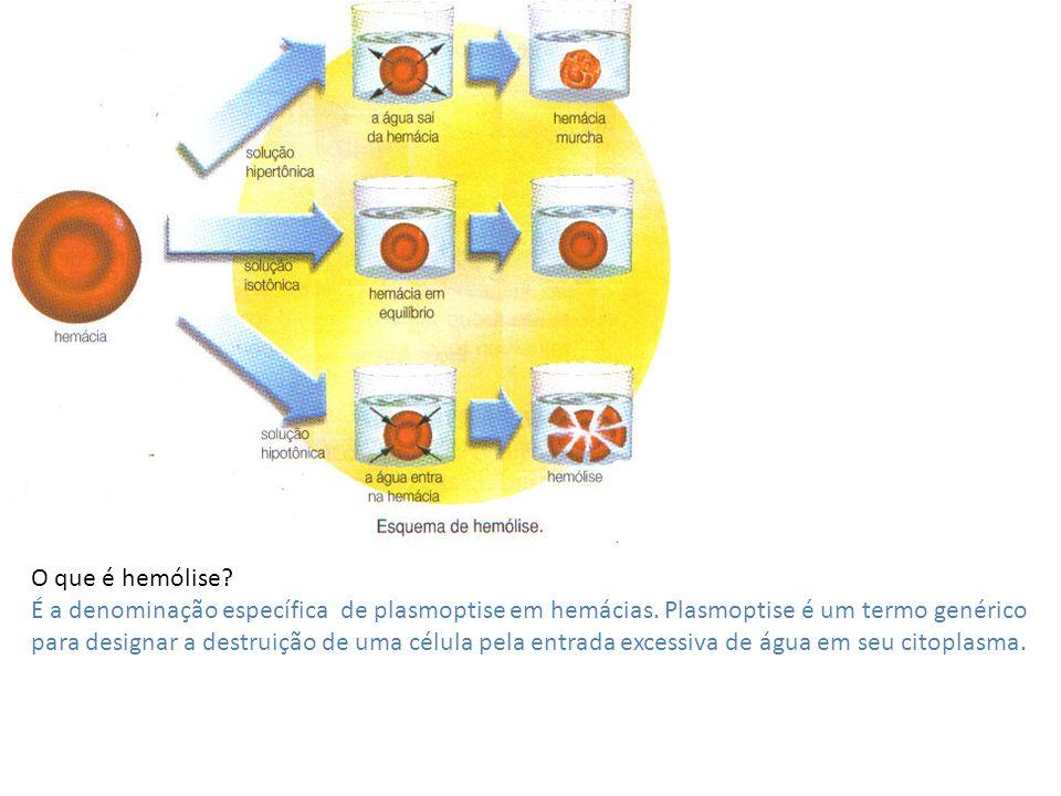 O que é hemólise