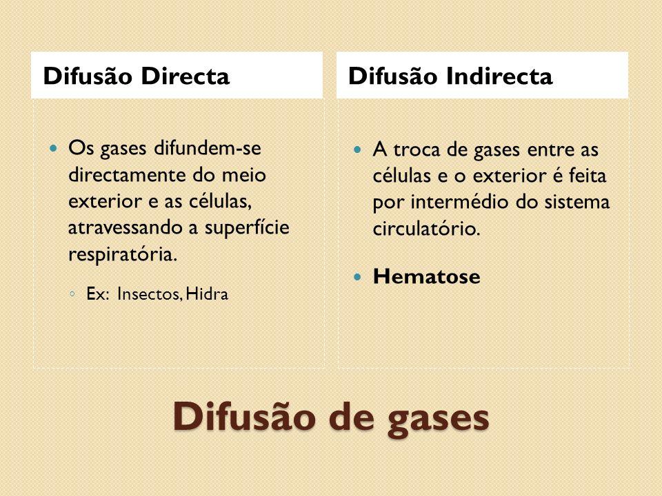 Difusão de gases Difusão Directa Difusão Indirecta