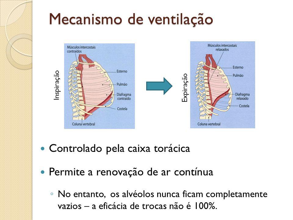 Mecanismo de ventilação