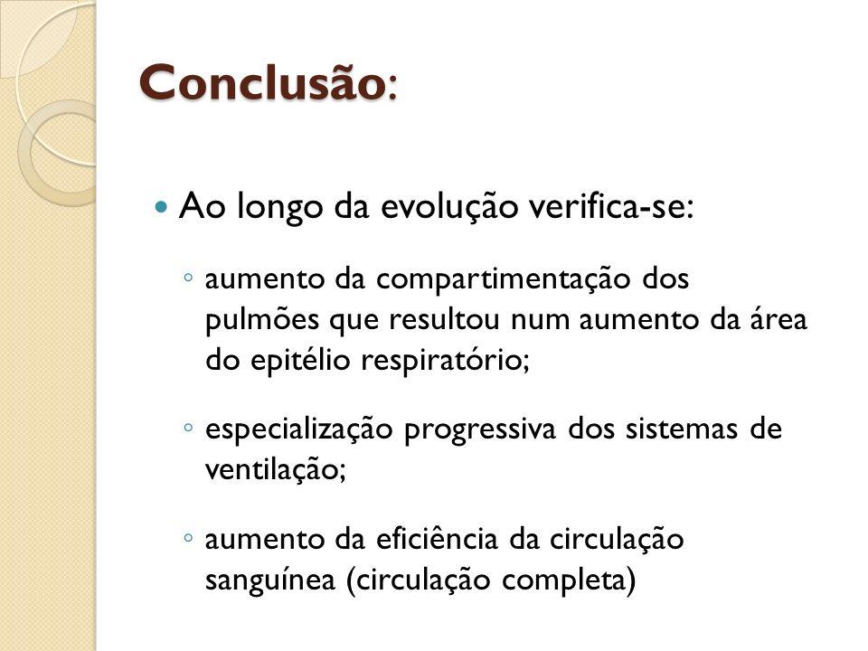 Conclusão: Ao longo da evolução verifica-se: