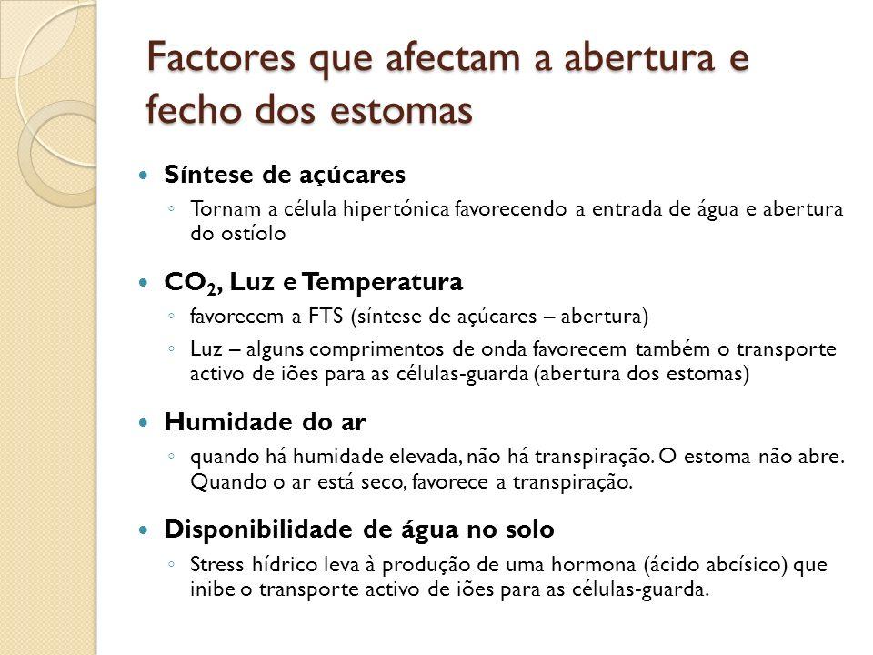 Factores que afectam a abertura e fecho dos estomas