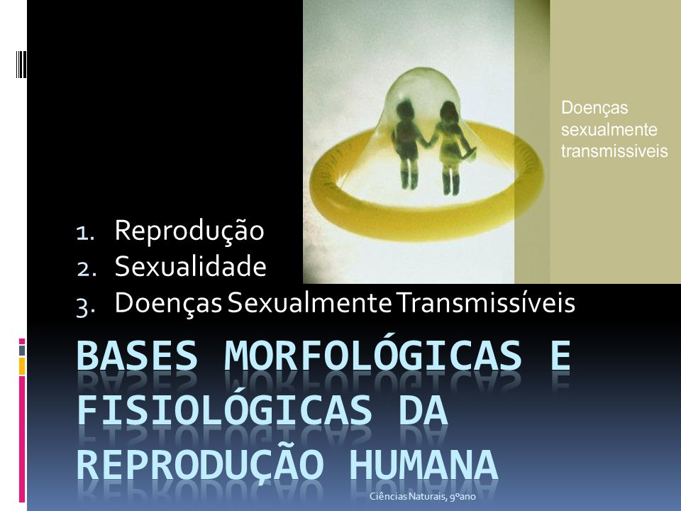 Bases Morfológicas e fisiológicas da Reprodução Humana