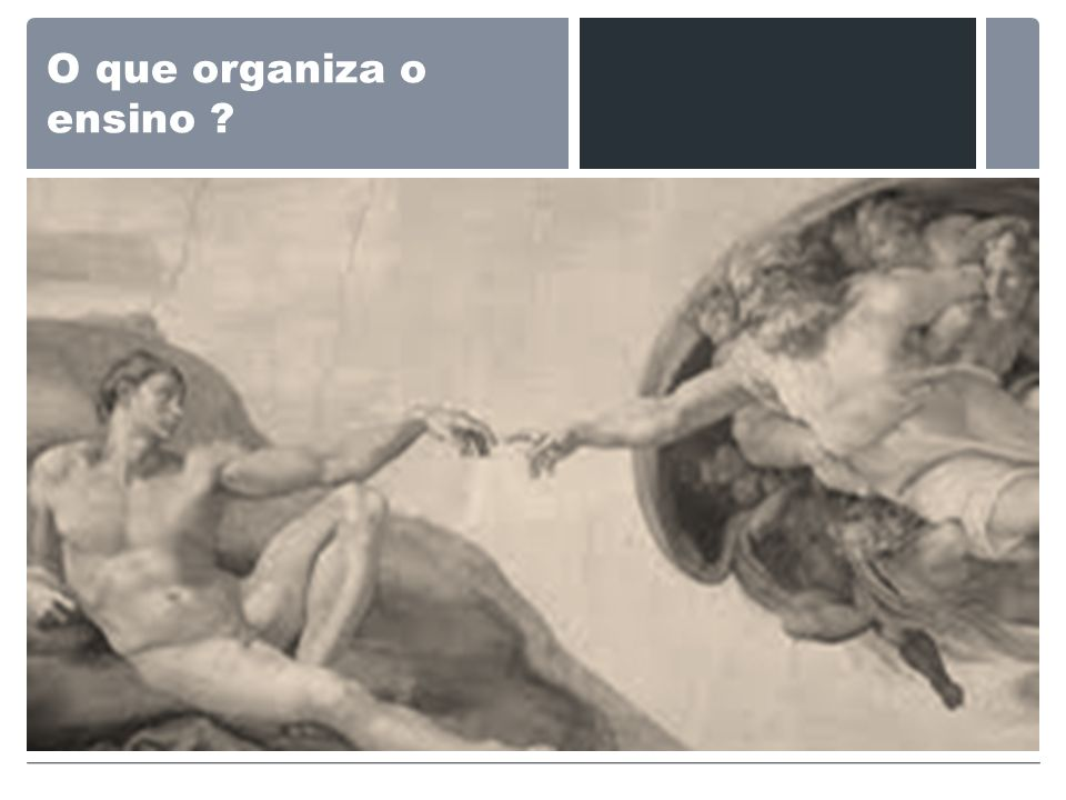 O que organiza o ensino