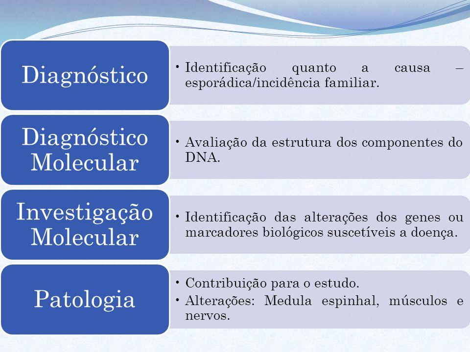 Identificação quanto a causa – esporádica/incidência familiar.