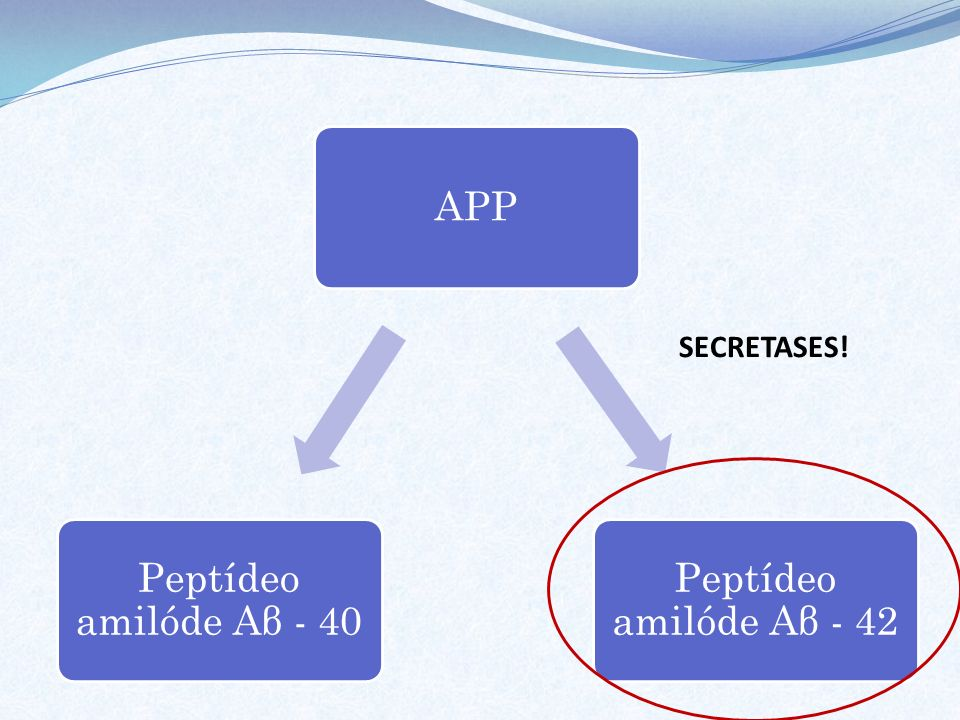 APP Peptídeo amilóde Aβ - 42 Peptídeo amilóde Aβ - 40 SECRETASES!