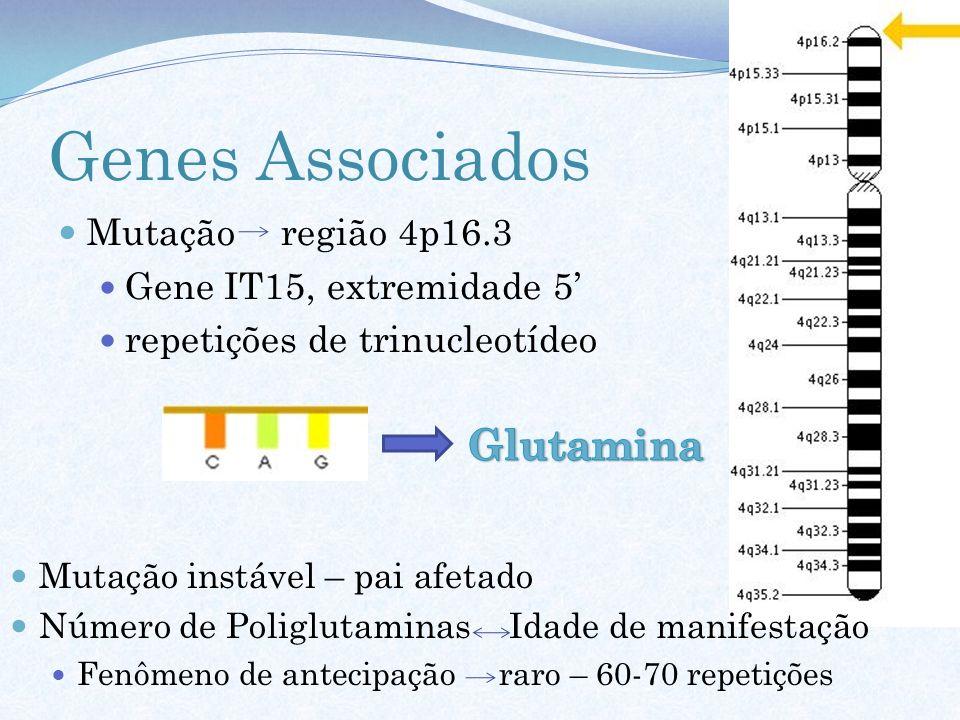 Genes Associados Glutamina Mutação região 4p16.3