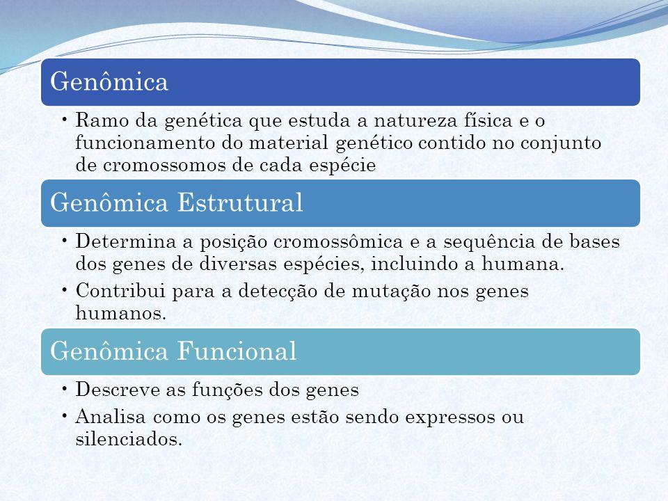 Genômica Genômica Estrutural Genômica Funcional