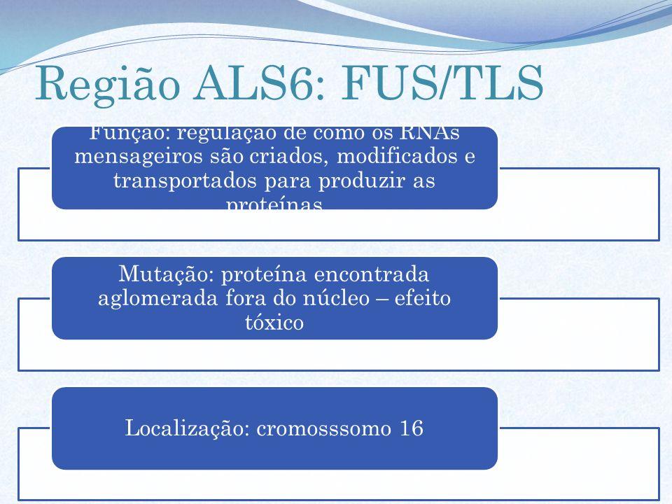 Região ALS6: FUS/TLS Função: regulação de como os RNAs mensageiros são criados, modificados e transportados para produzir as proteínas.