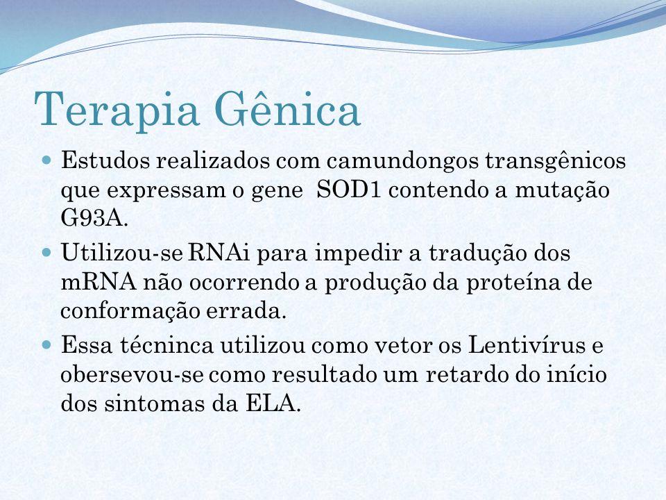Terapia Gênica Estudos realizados com camundongos transgênicos que expressam o gene SOD1 contendo a mutação G93A.