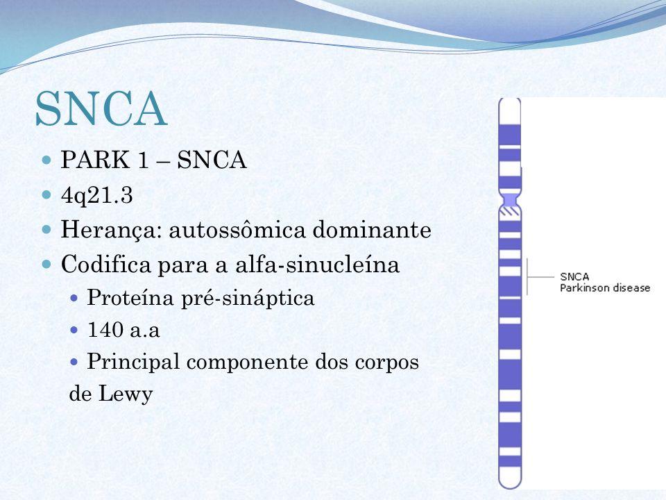 SNCA PARK 1 – SNCA 4q21.3 Herança: autossômica dominante