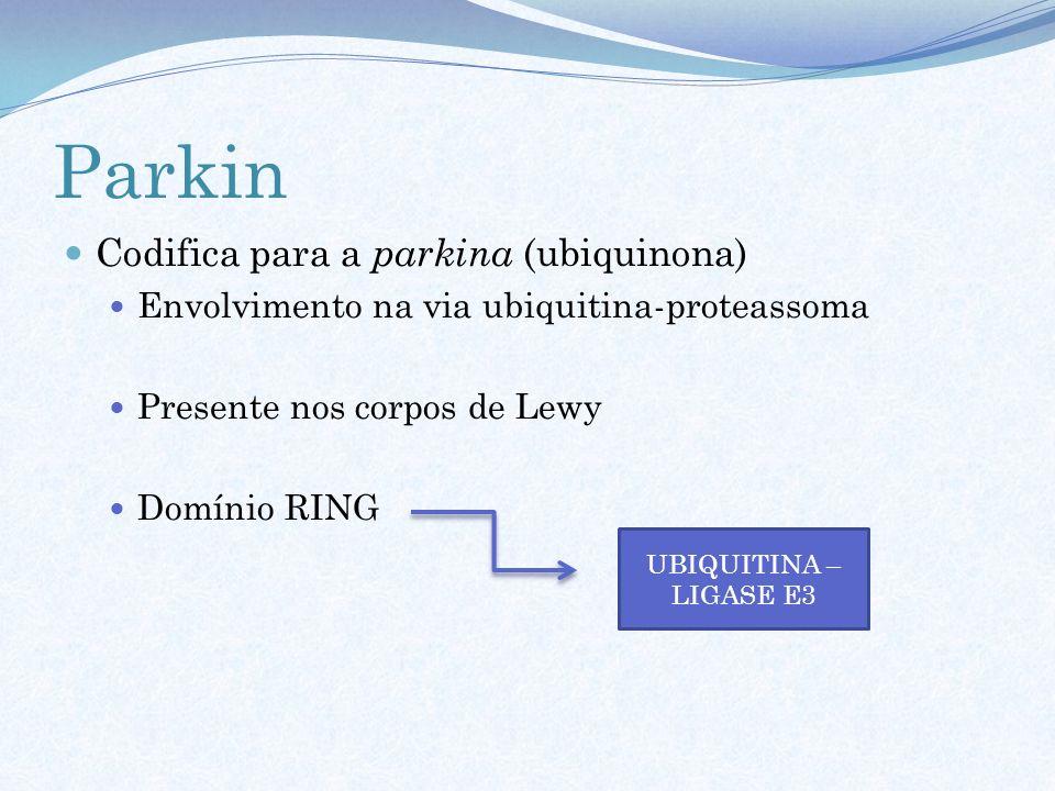 Parkin Codifica para a parkina (ubiquinona)