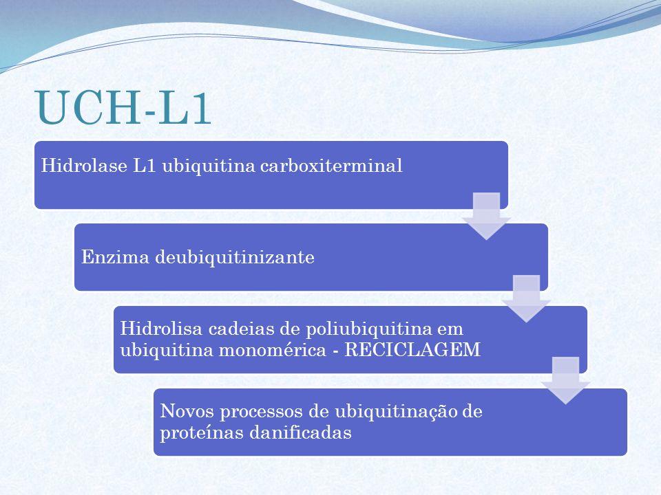 UCH-L1 Hidrolase L1 ubiquitina carboxiterminal