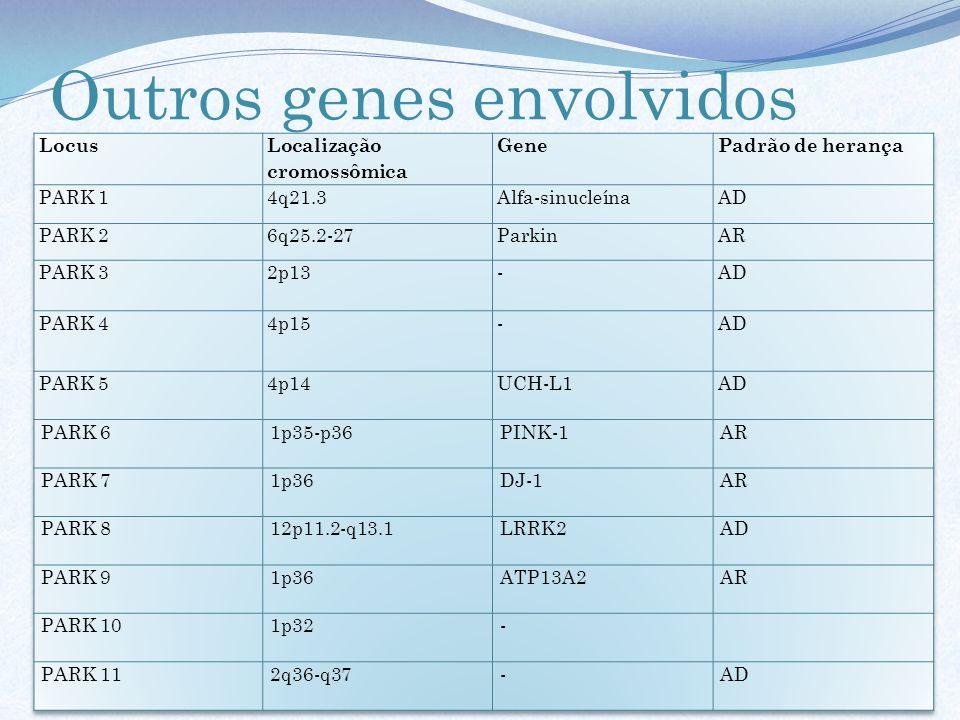 Outros genes envolvidos