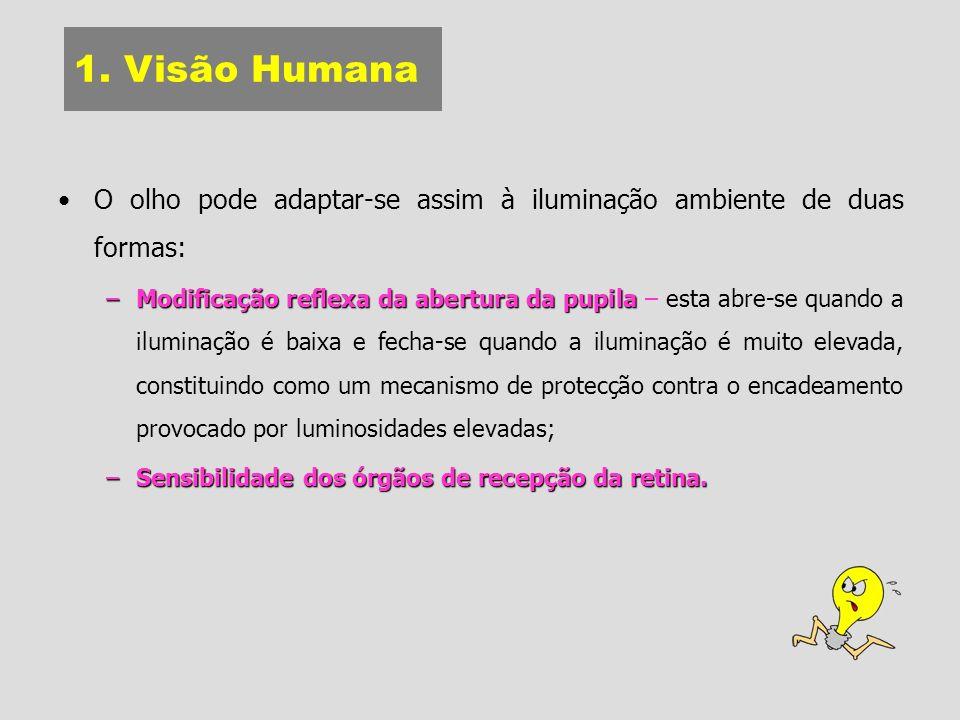 1. Visão Humana O olho pode adaptar-se assim à iluminação ambiente de duas formas:
