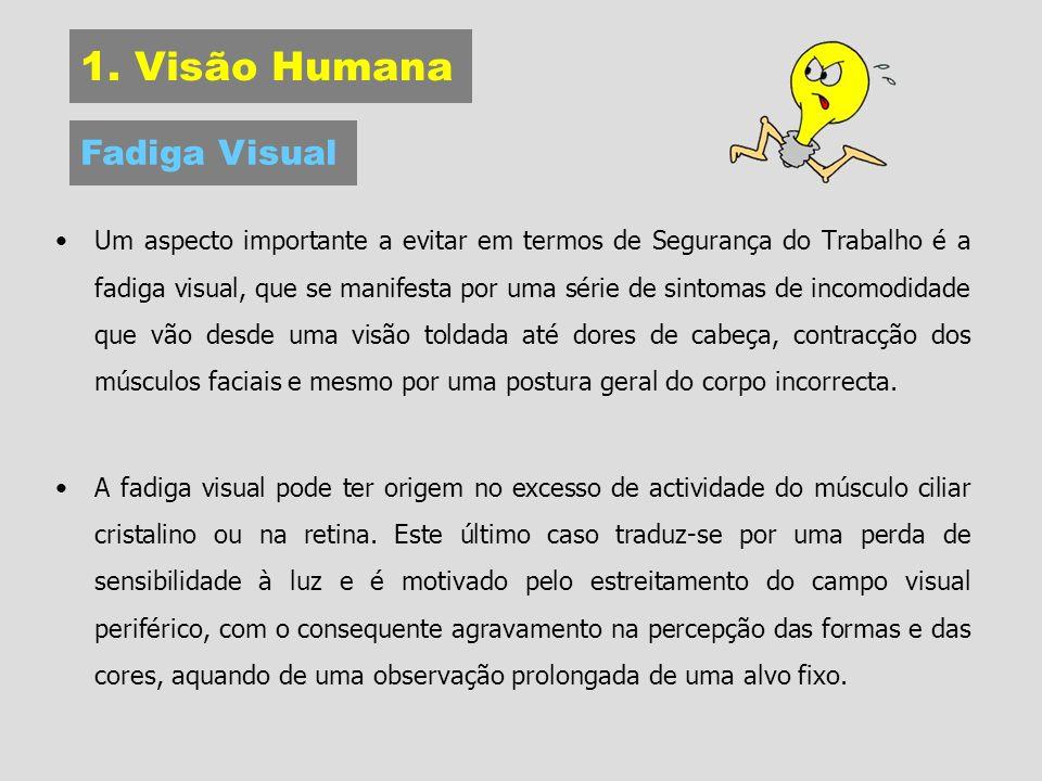 1. Visão Humana Fadiga Visual